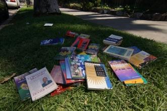 Livres en libre accès sur Franklin Avenue. Photo: © Mélina Huet